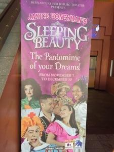 Sleeping Beauty Banner